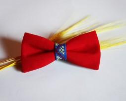 papion-tricolor
